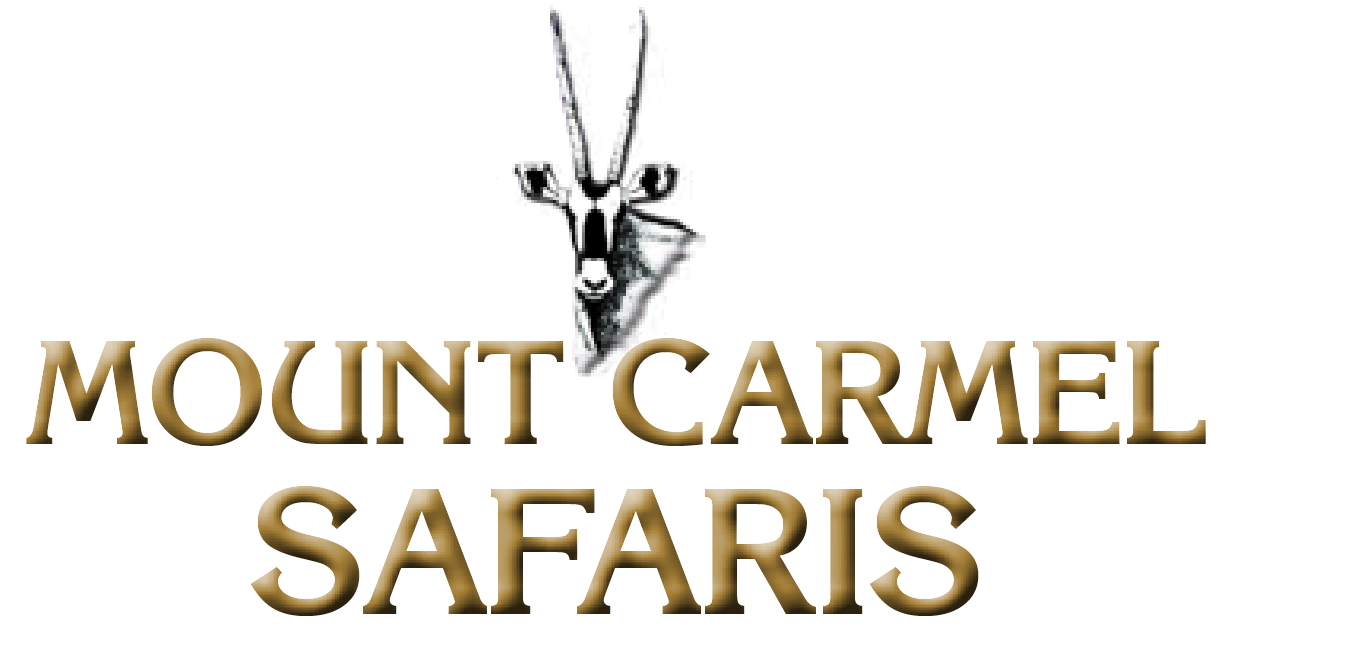 Mount Carmel Safaris